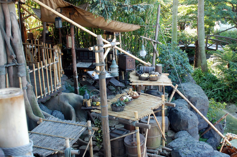 100 Restless Nights and the Return to Joy: Coping with Our Own Swiss Family Robinson Ordeal (Part 3)